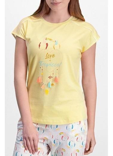 Pierre Cardin Pierre Cardin Sarı Kadın Pijama Takımı Sarı